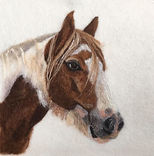Needle felt pet portait, horse