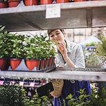 Woman Shopping at Plant Market