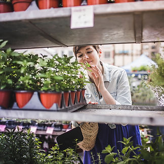 Woman Shopping at Plant Market