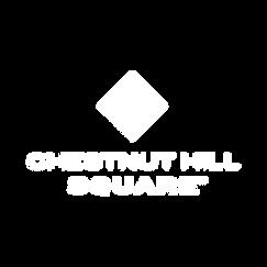 Chestnut Hill Square