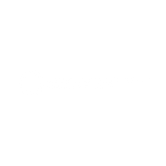 Capital Strategies Investment Group