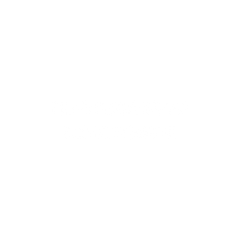 Neighborhood Renaissance