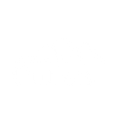 Asheville Outlets
