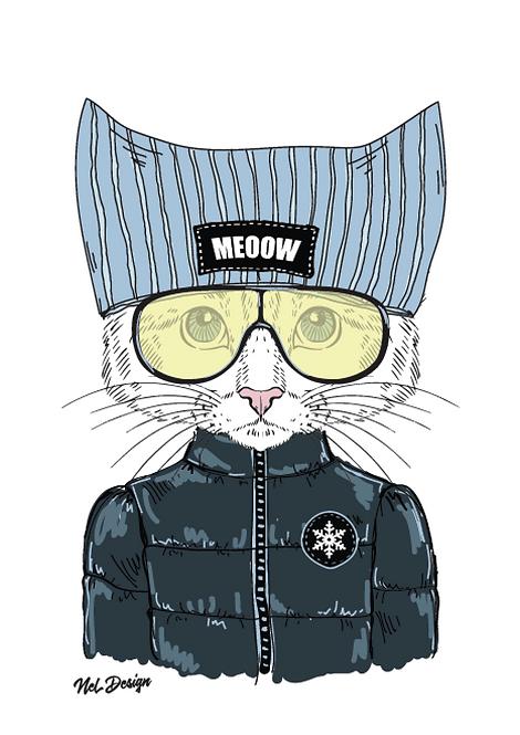 Ski Kitten