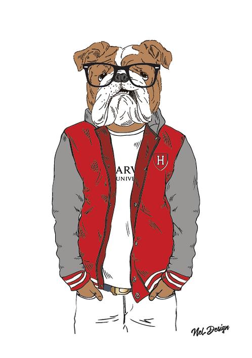 Harvard Bulldog hipster animal illustration