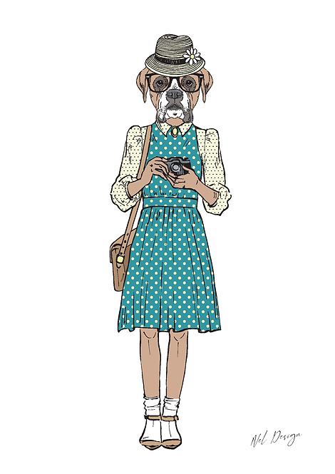 Camera Bulldog