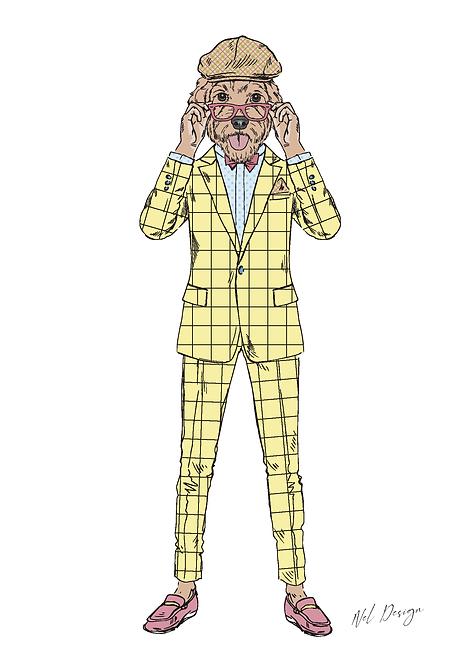 Plaid Suit Labradoodle