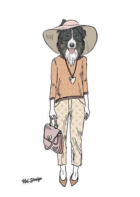 Chic Australian Shepherd
