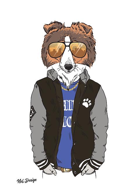 Hip Hop Shetland Sheepdog