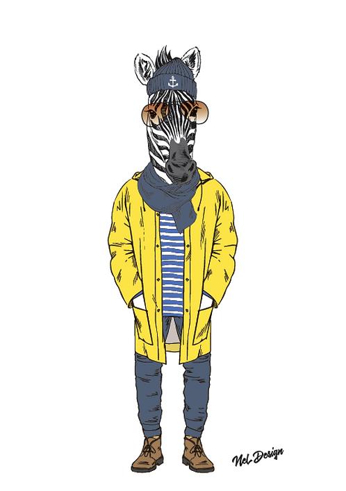 Rainy Day Zebra