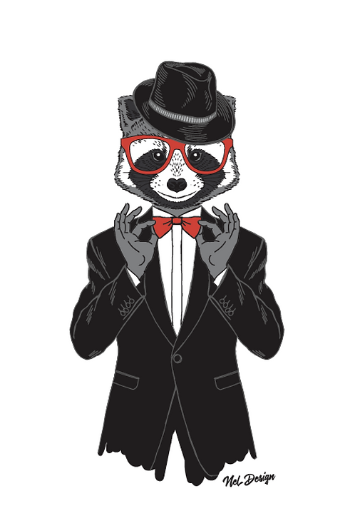Tuxedo Raccoon