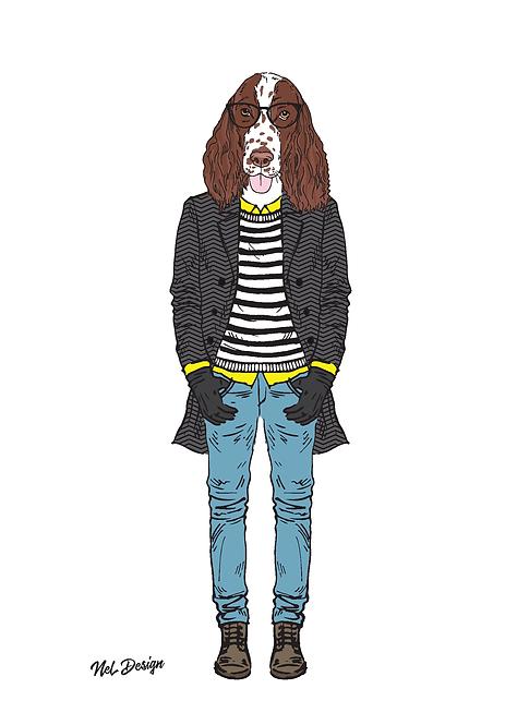 Hipster Springer Spaniel