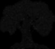 Bodhi Pharma Logo