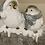 Thumbnail: Light Up Birds On Log