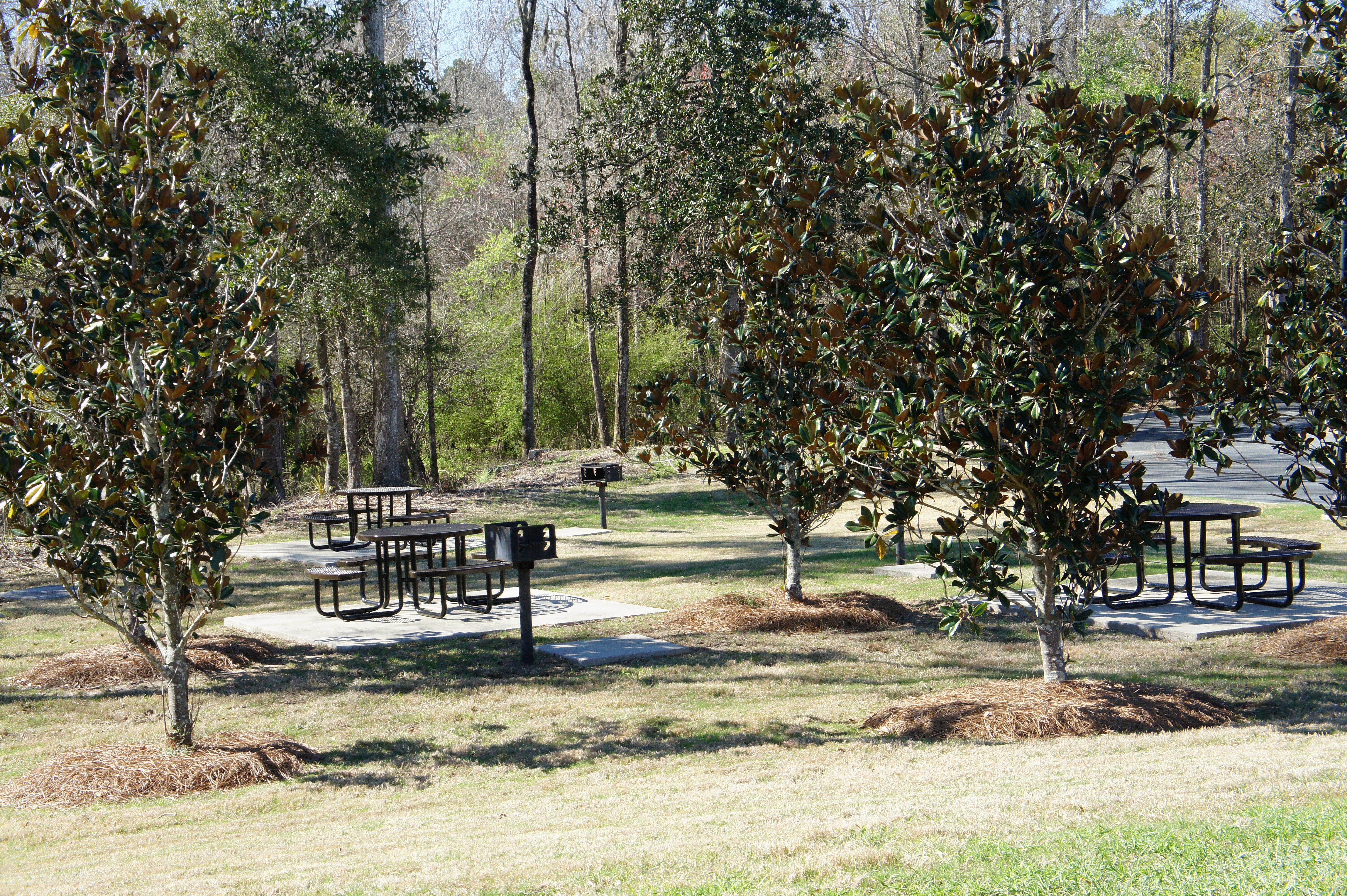 I 45 picnic area