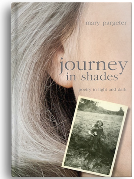 journey in shades by Mary Pargeter (HARDBACK)