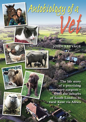 About a vet cover montage 500px.jpg