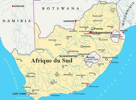 Voyage d'Affaires à Johannesburg : Guide pratique   Afrique du Sud
