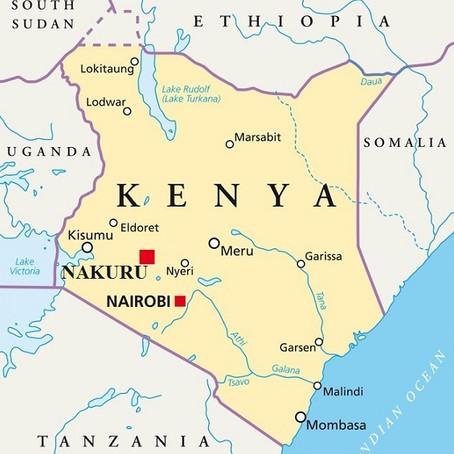 Voyage d'Affaires à Nakuru : Guide pratique | Kenya