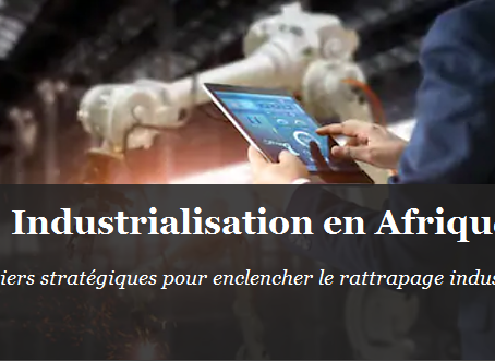 Industrialisation en Afrique : 4 priorités pour une stratégie gagnante