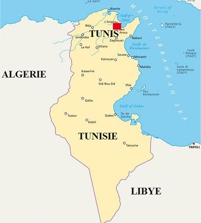 Voyage d'Affaires à Tunis : Guide pratique | Tunisie