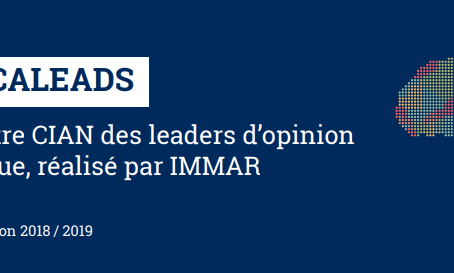 L'image de la France dégradée au yeux des leaders d'opinion en Afrique