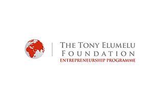 Tony Elumelu Foundation.png