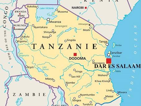 Voyage d'Affaires à Dar es Salaam : Guide pratique   Tanzanie