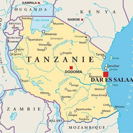 Voyage d'Affaires à Dar es Salaam : Guide pratique | Tanzanie