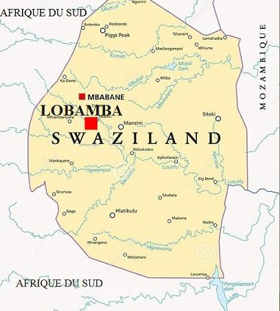 Voyage d'Affaires à Lobamba : Guide pratique | Eswatini