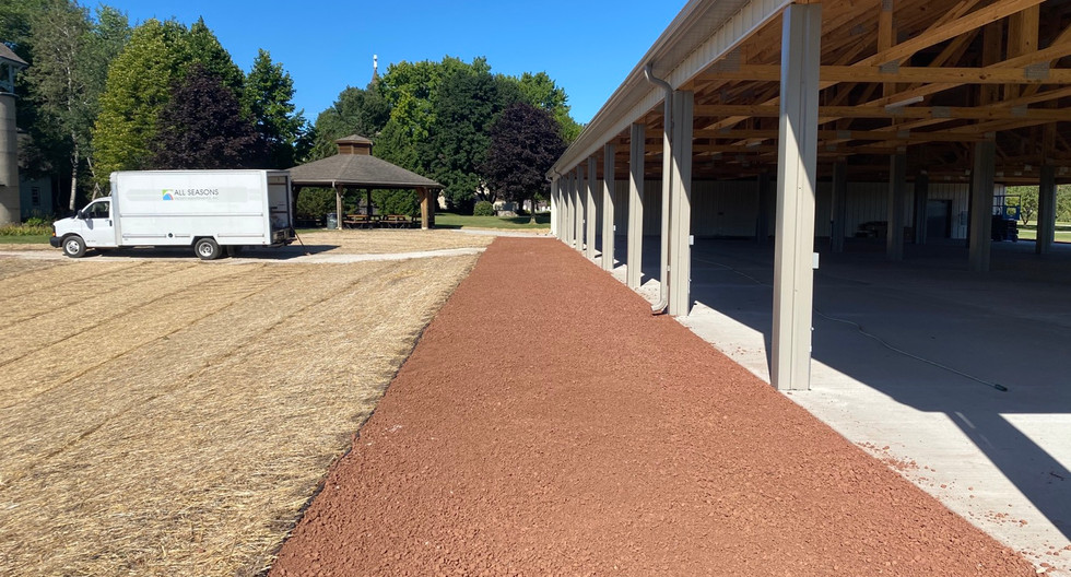 New path and Turf