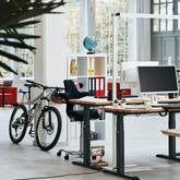 Office Plus Ergon Motor