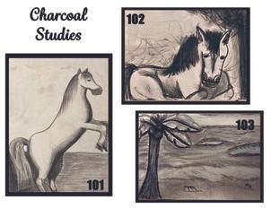 Charcoal studies 101-103