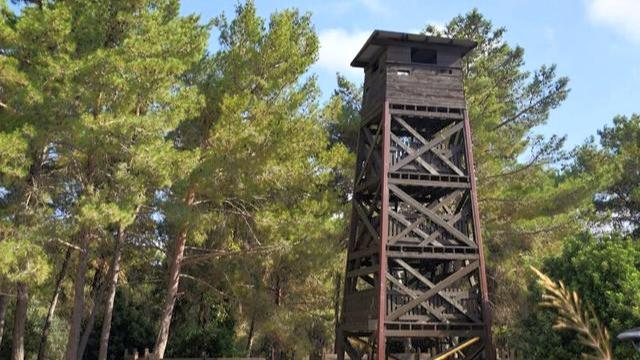 מגדל שמירה משוחזר ביער חניתה