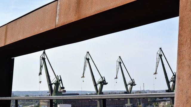 עגורנים בנמל בגדנסק - תצפית מגג המוזאון לסולידריות