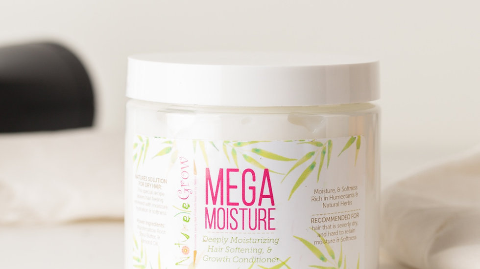 Mega Moisture Deep conditioner