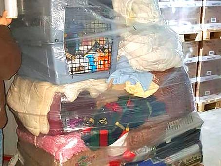 Futterspenden an spanisches Tierheim