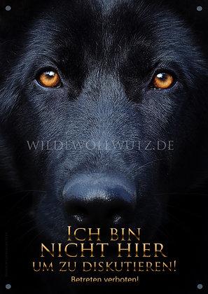 schwarzer Malinois, schäferhund, warnschild, wildewollwutz, aussergewöhnlich,