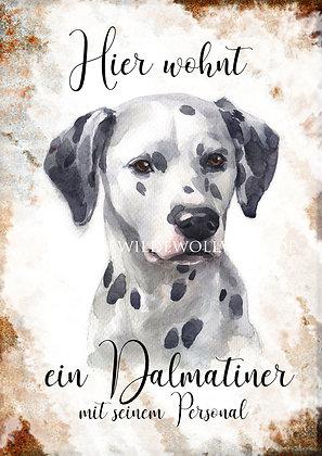 D- F Rasseportraits von Dalmatiner bis franz. Bulldogge
