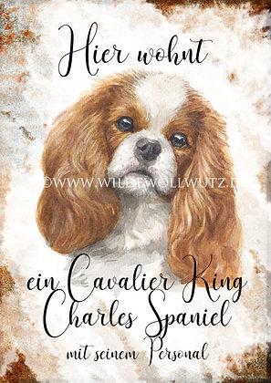 K - Z Rasseportraits von King Charles bis Zwergschnauzer