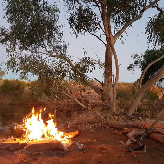 Bin Track, Central Australia, NT