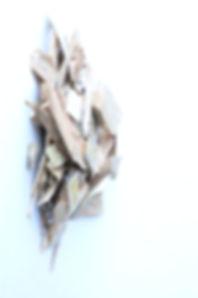 wood%20chips%20fresh_edited.jpg