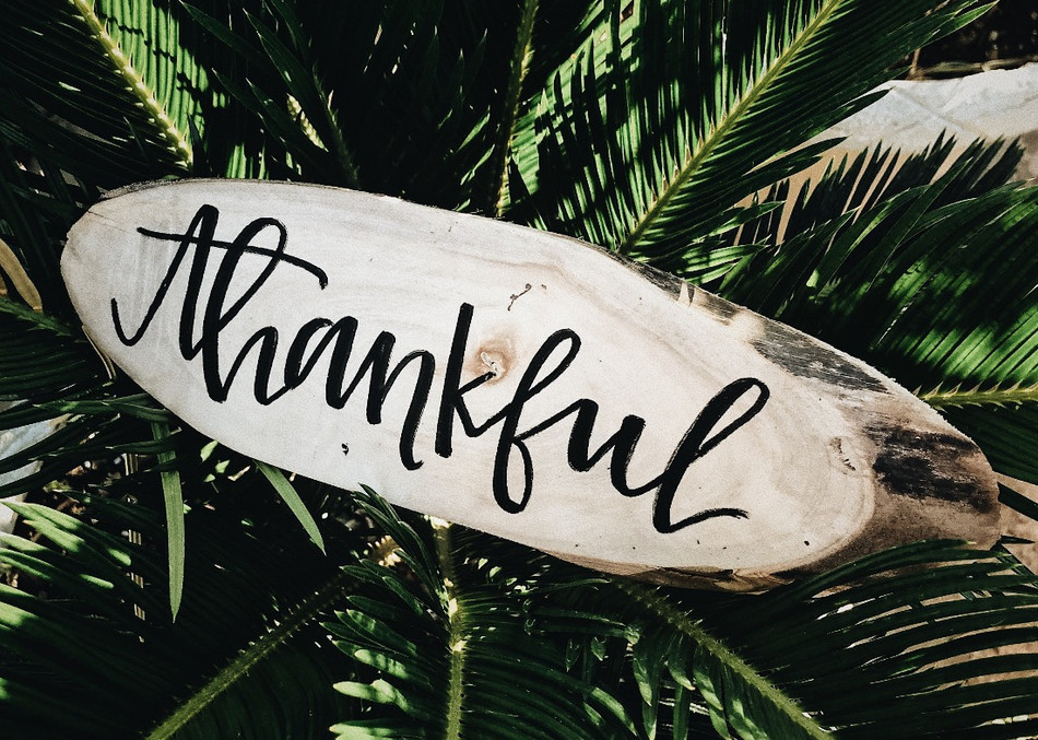 100 things I am thankful for this year