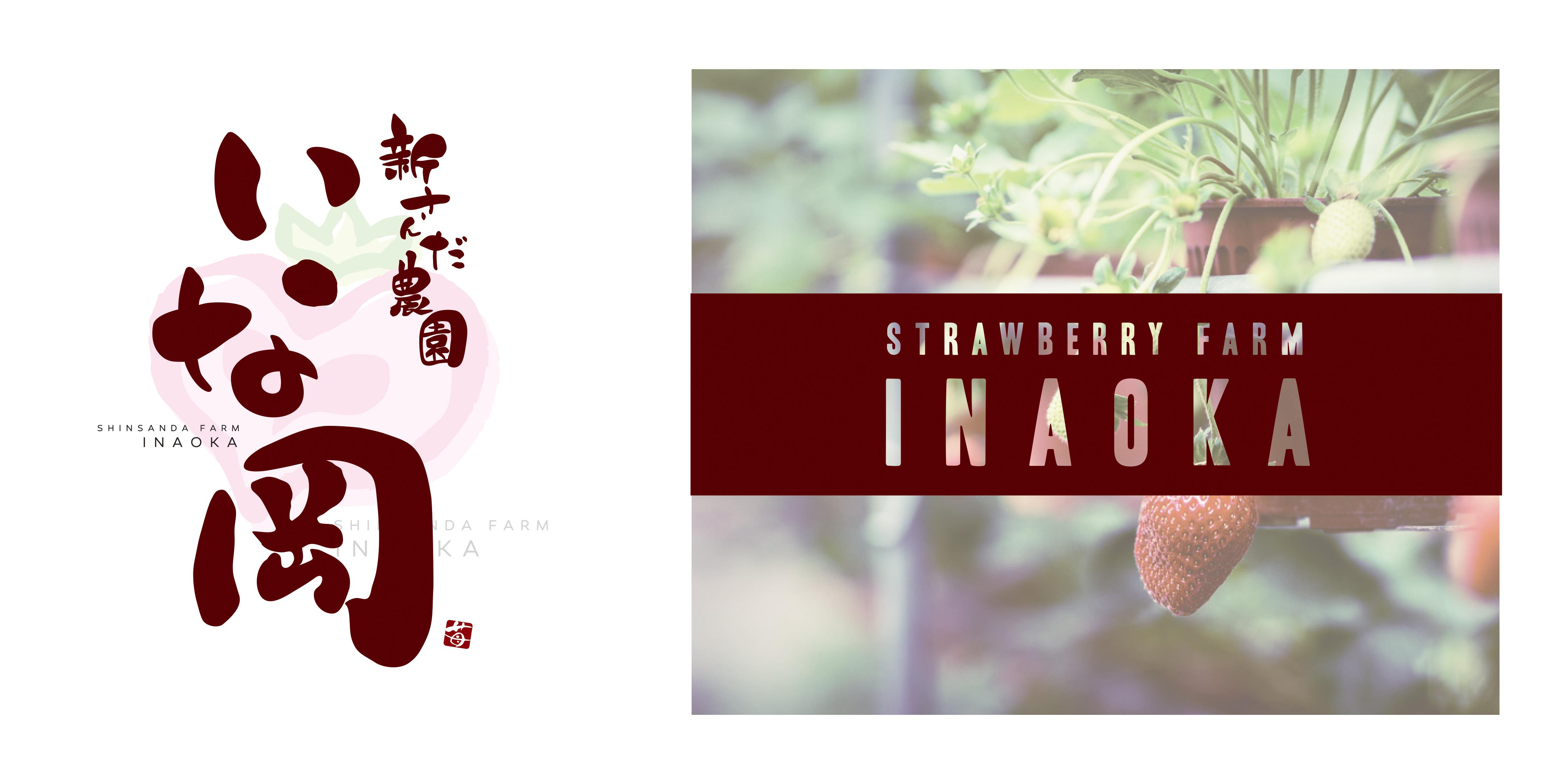 portfolio_INAOKA_design_161120-2