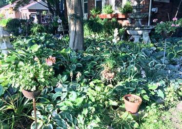 Williamsfield_garden_club_outdoor_garden