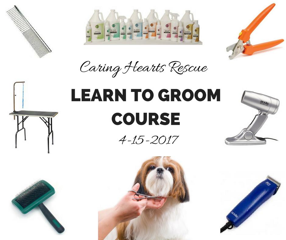 Learn to Groom