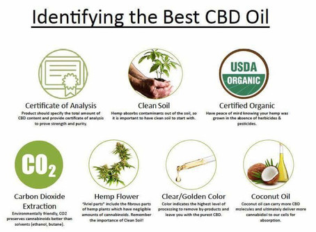 How to KNOW what CBD oil to Take?