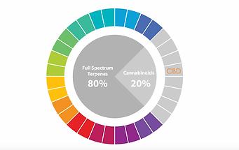 Screen%20Shot%202020-05-16%20at%2011.27_