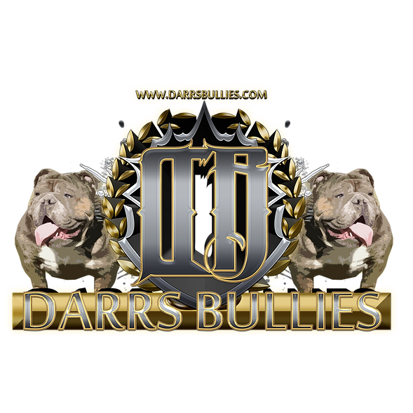 Logo for Darr's Bullies, an Ohio based breeder and seller of rare and exotic colored English Bulldogs