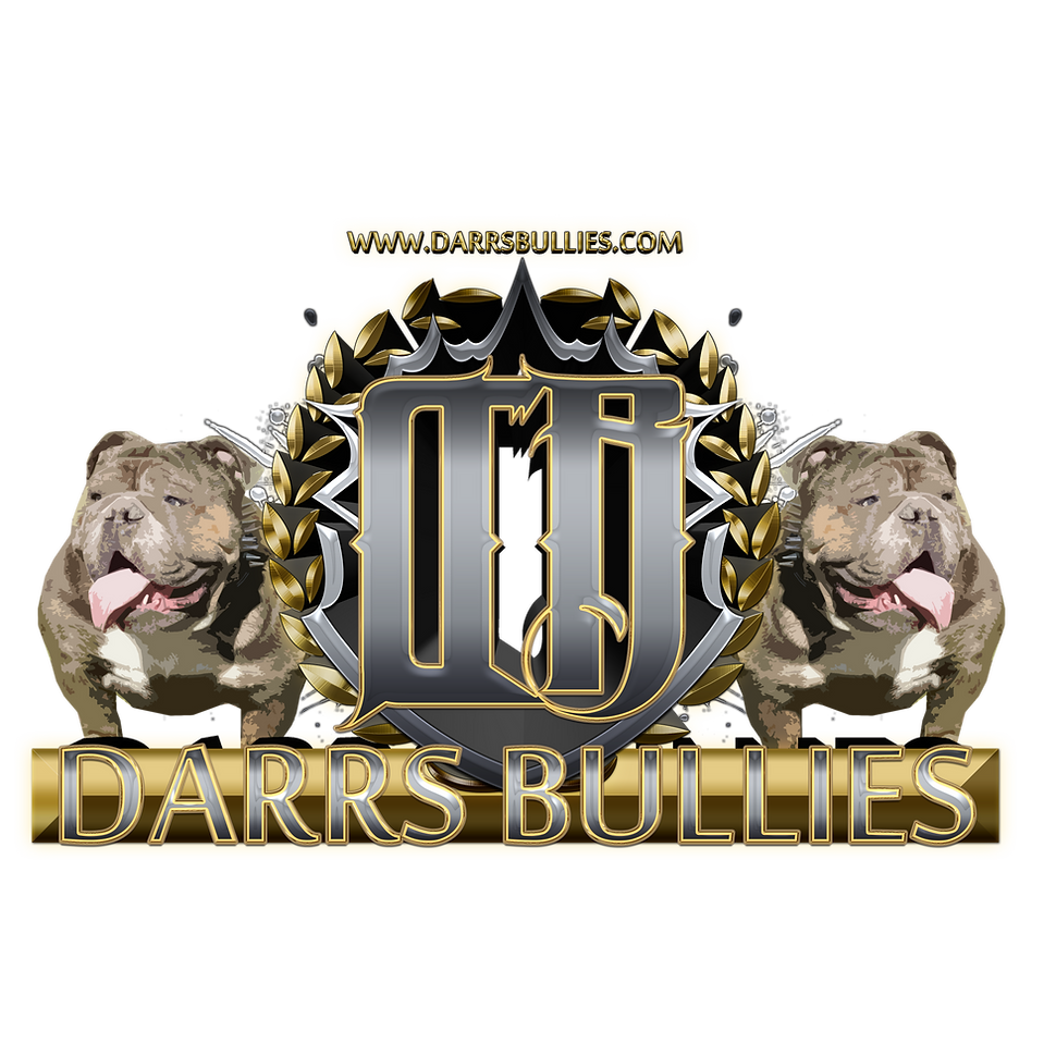 Logo for Darr's Bullies a breeder of  English Bulldogs and seller of English Bulldog Puppies